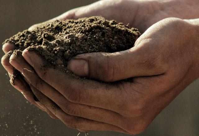 Platinum lansdape Soil available at The Yard Landscape and Garden Centre, Doonan