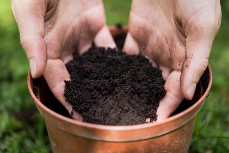 Potting Soil available at The Yard Landscape and Garden Centre, Doonan