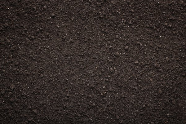 We use a screened soil as the base for all our premium soil blends at The Yard Landscape and Garden Centre, Doonan